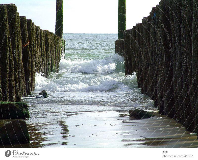 with the day at the sea Beach Bollard Lake North Sea Water Sand