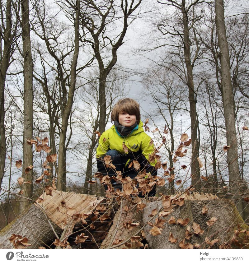 Child squats in the beech forest on a thick sawed off tree stump and looks into the camera Human being Schoolchild Forest Beech wood Tree Tree stump Spring Sky