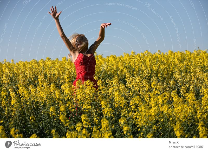 leaping Freedom Summer Human being Feminine Young woman Youth (Young adults) 1 18 - 30 years Adults Nature Plant Beautiful weather Flower Blossom Field Laughter