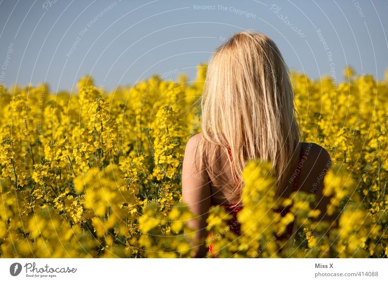 long runner Beautiful Hair and hairstyles Summer Sun Human being Feminine Young woman Youth (Young adults) Woman Adults Back 1 13 - 18 years Child 18 - 30 years