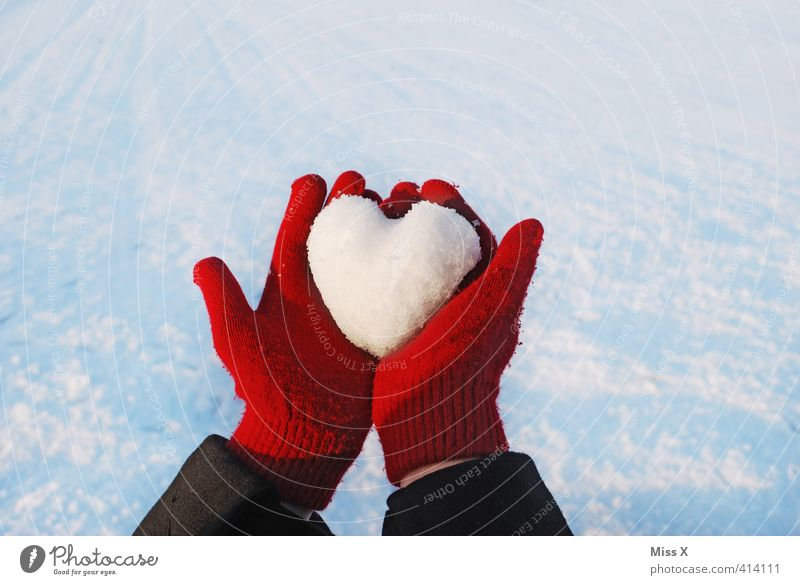 Heart of ice Winter Ice Frost Snow Cold Emotions Moody Sympathy Love Infatuation Loyalty Romance Lovesickness Gloves Heart-shaped Snowscape Snow White Red