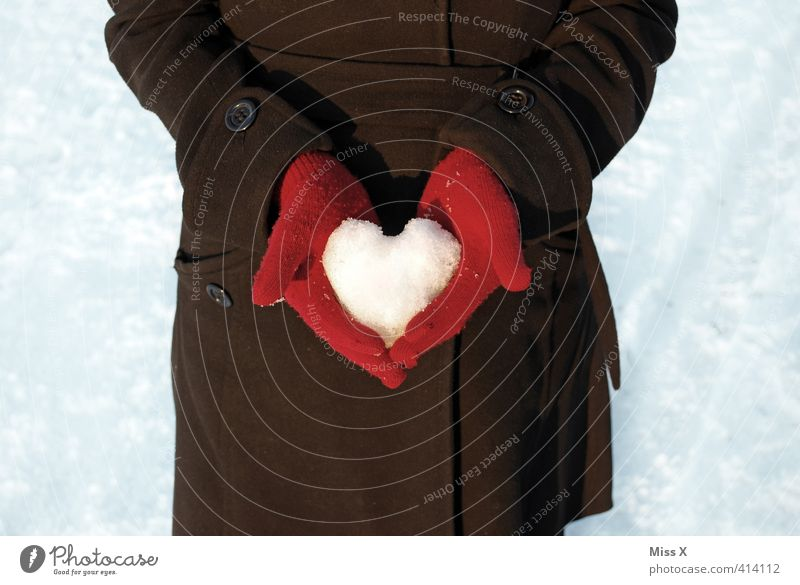 Human being Youth (Young adults) Hand Red Winter Adults Cold Love 18 - 30 years Life Snow Emotions Couple Moody Heart Hope