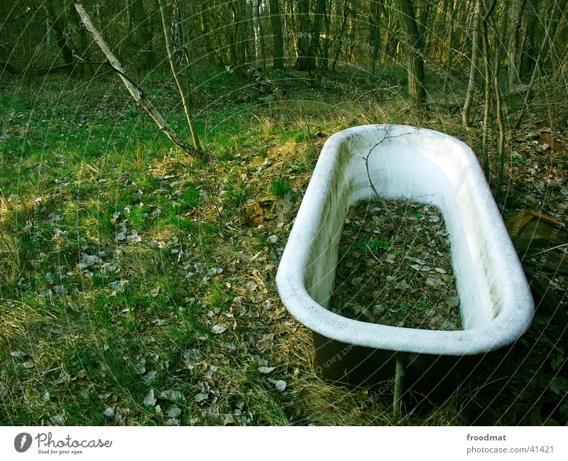 Swimming in the forest Forest Leaf Weathered Green Bathtub Obscure Dirty