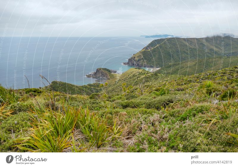 Cape Reinga in New Zealand cape reinga te rerenga wairua aupori peninsula north island new zealand coast coastal sea ocean landscape tasman sea pacific ocean