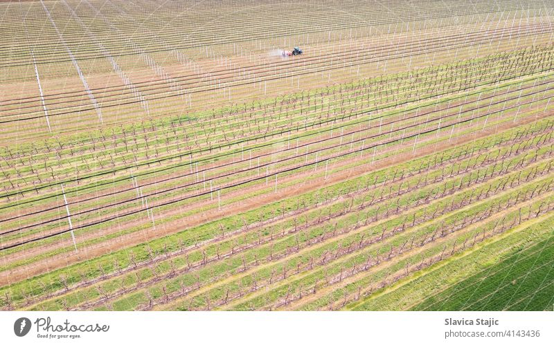 Aerial view of agricultural field in spring. Sprayer sprays orchard insecticide in orchard , spring season. above aerial agriculture agronomy brown combine