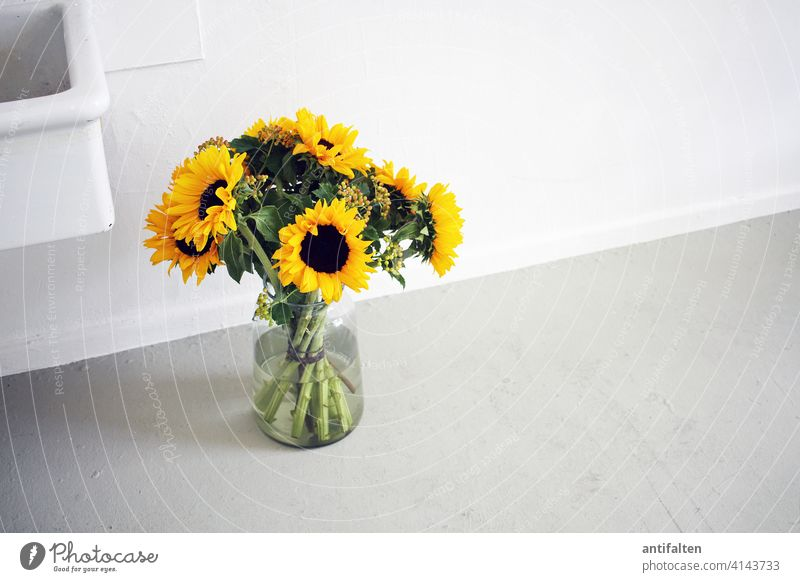 Still Life Bouquet flowers Vase Glass Sunflower Flower Colour photo Blossom Interior shot Decoration Blossoming Spring Nature Summer Green Day Leaf Atelier