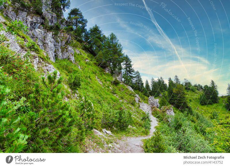 Summer hiking trail in the Swiss Alps nature alps travel scenery tourism summer scenic europe switzerland mountain alpine peak view sky landscape swiss valley