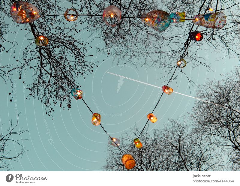 String of lights for seasonal decoration 2.0 Light decoration Fairy lights Feasts & Celebrations bare trees Lamp Evening Winter Christmas & Advent Blanched