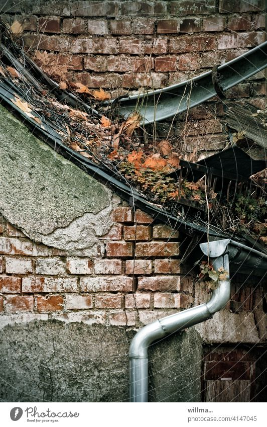 one shall bear the other's burden dilapidated Decline Eaves Rain gutter Downpipe Brick building Derelict lost places Building House (Residential Structure) Roof
