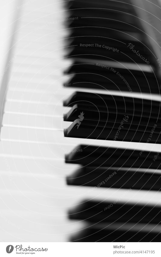 Music in black and white keys Keyboard instrument Piano fumble black-and-white silent on one's own Practice Musical instrument Detail Play piano Concert