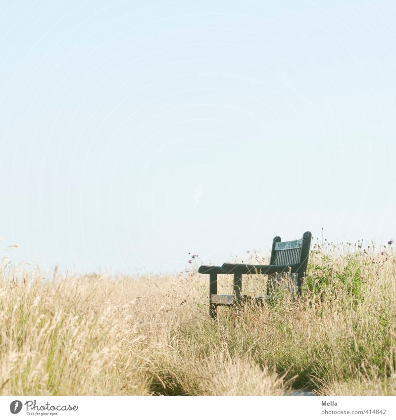 resting place Environment Nature Landscape Summer Grass Meadow Bench Relaxation Natural Longing Break Calm Time Empty Free Seating Colour photo Exterior shot