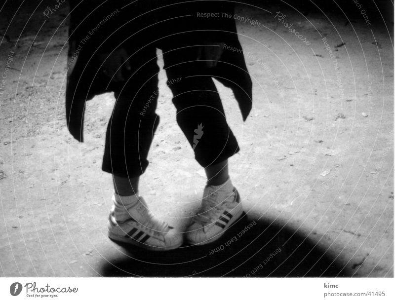 Funny Legs Feet Footwear Floor covering Sneakers Attic Penguin