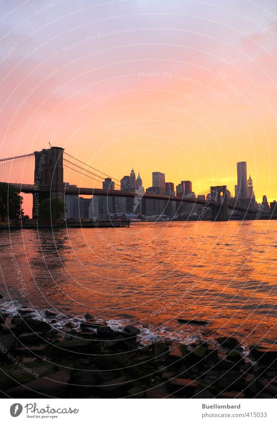 Brooklyn Bridge and New York Skyline in the evening Vacation & Travel Tourism Sightseeing City trip Architecture Water Sunrise Sunset Beautiful weather Rock