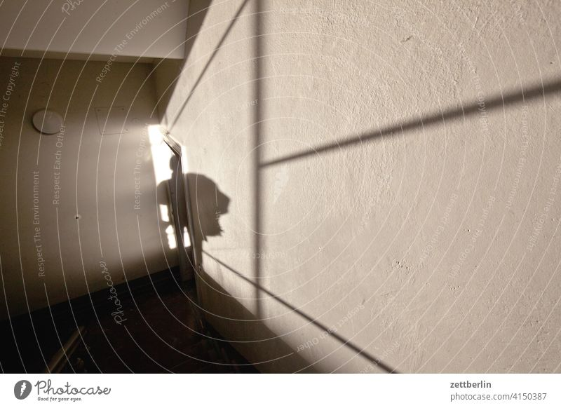 Shadows in the staircase sales Descent Downward Old building ascent Upward House (Residential Structure) Light Man Apartment house Human being Deserted