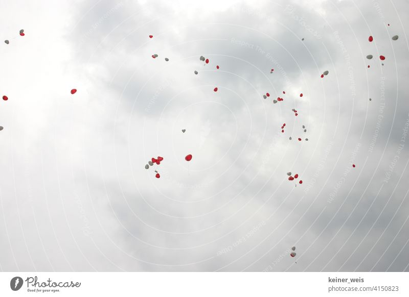 Red and white balloons in grey cloudy sky Heart-shaped White Piece of paper cards Many Flying Wedding Gray Clouds Weather Rainy weather quantity Hover romantic