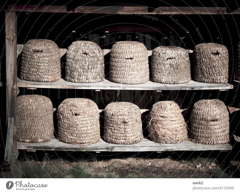Historic buildings Beehive Old Open-air museum 10 quantity Many Story Plaited plaited baskets Rural Hatch Opening Shelves Wood Simple Sequence rank and file