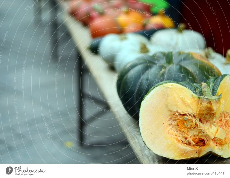 pumpkin season Food Vegetable Nutrition Organic produce Vegetarian diet Fresh Healthy Delicious Farmer's market Greengrocer Vegetable market Markets