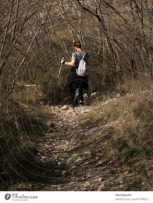 Hiker walking downhill with poles Hiking Woman Rear view Mountain Nature Alps Exterior shot stony road Walking stick undergrowth Spring Backpack Movement