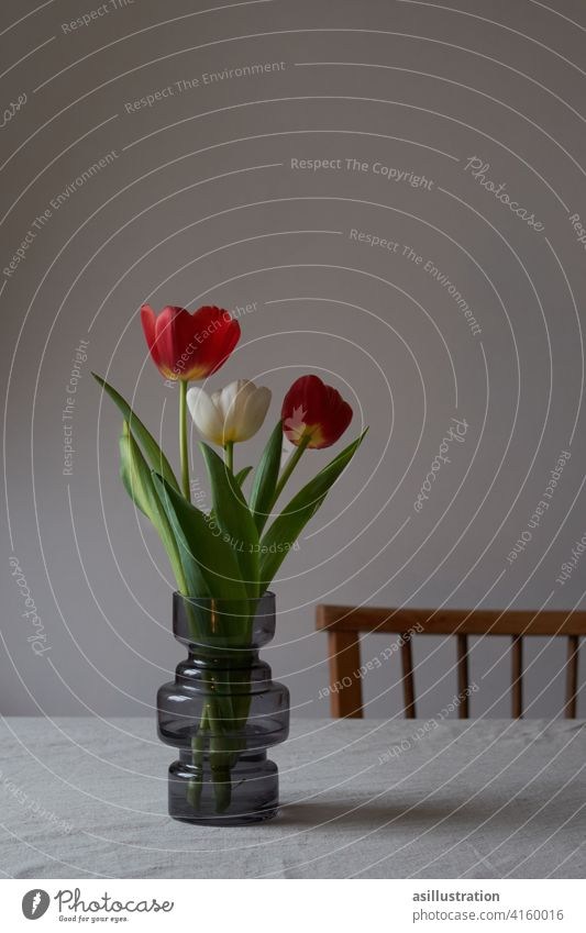 Colorful tulips in vase Red White Red variegated Joy Gray Patch of colour Bouquet Tulip Blossom Flower Green Spring herald of spring Spring flower Interior shot