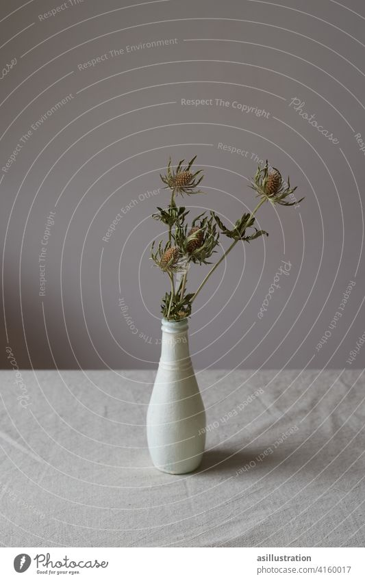 Thistles in vase on dining table Thistle blossom Dried flower Shriveled Dinner table Flower vase Gray Thorny Plant dead Gloomy melancholically sad melancholy
