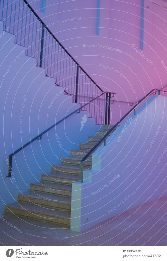 Calm House (Residential Structure) Moody Architecture Stairs Violet Visual spectacle