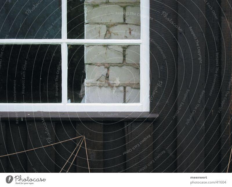 scheuneneinblick Barn Window Wood Wall (building) Window frame Architecture Glass Frame