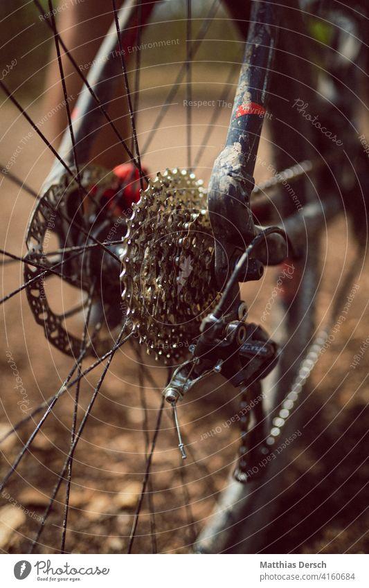 Mountain bike in detail Bicycle Leisure and hobbies Cycling Detail spoke wheel Mountain biking Sports