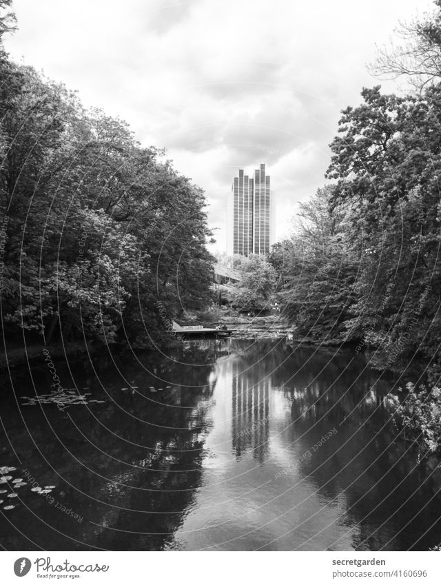 I see double Hamburg Park Exterior shot trees Reflection in the water reflection Architecture High-rise Lake Pond clearing Clouds Sky Nature Calm Landscape
