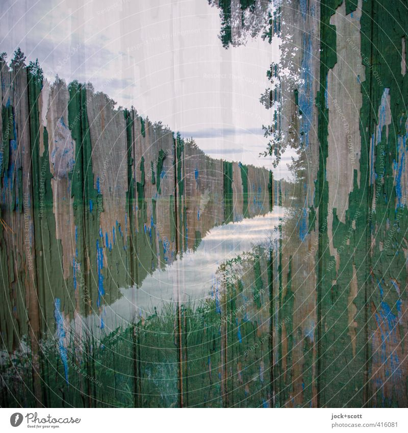 double mated with wood at the carp pond Landscape Sky Clouds Forest Middle Franconia Horizon Irritation Wooden board Weathered Double exposure Ravages of time