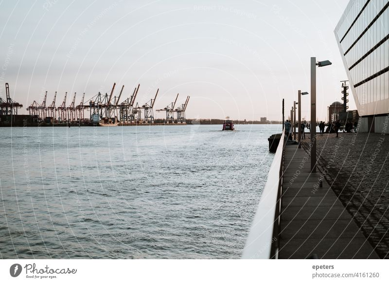 Harbour cranes, a ferry and parts of the Dockland Office Building dockland Hamburg Port of Hamburg pastel Water Elbe River Germany Ferry Sunset Exterior shot