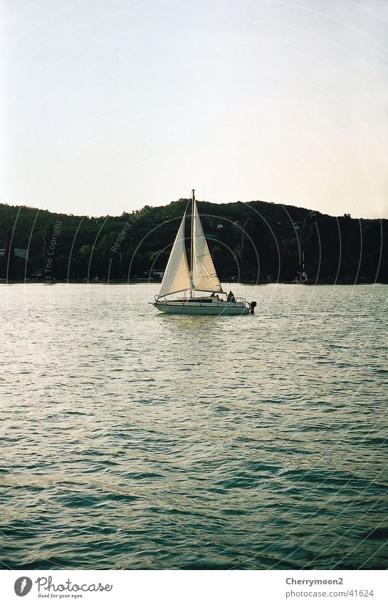 Nature Water Vacation & Travel Calm Relaxation Navigation Dusk Sailboat