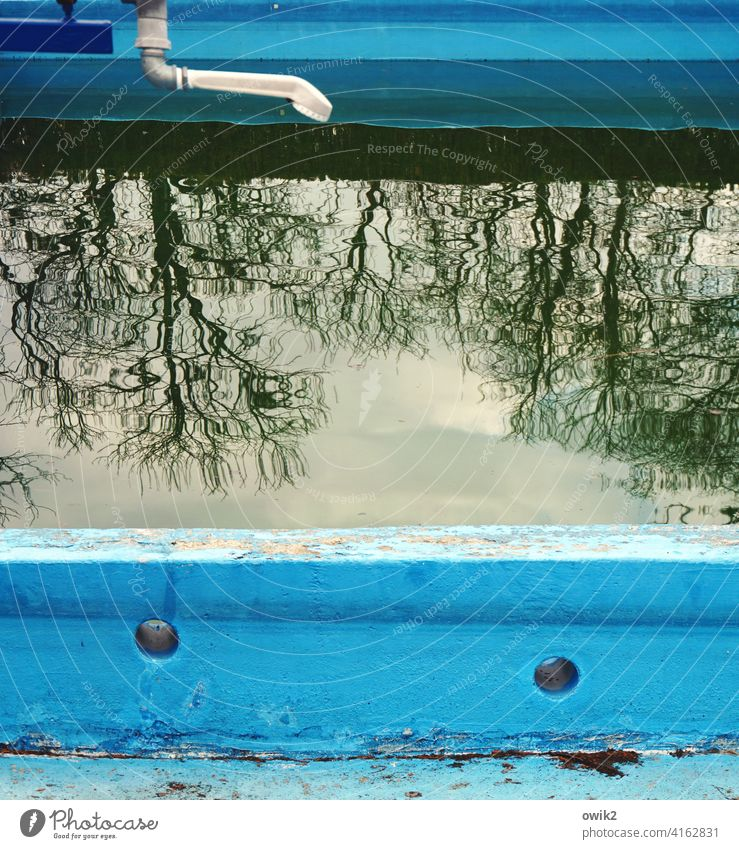 non-swimmer pool Open-air swimming pool Swimming pool Sporting Complex Deserted Close-up Exterior shot Colour photo Calm Water Stone Idyll Tree
