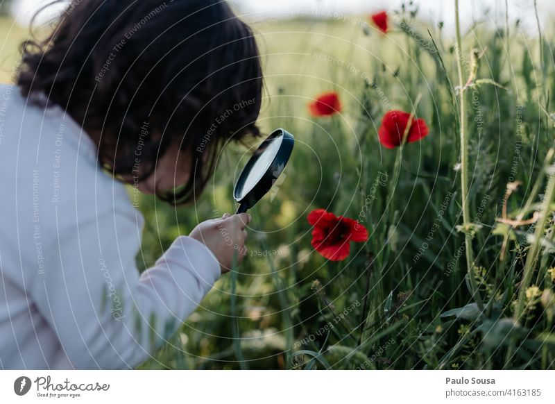 Child watching poppies with magnifying glass 1 - 3 years Caucasian Magnifying glass Poppy Poppy blossom Curiosity Authentic Spring Spring fever Education