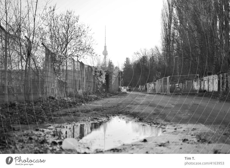 an old path through the wall park with puddle b/w Television tower Puddle Lanes & trails Berlin Prenzlauer Berg Capital city Exterior shot Deserted Day