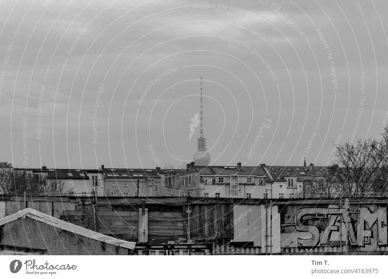 Prenzlauer Berg seen from Mauerpark wall park Television tower Graffiti b/w Exterior shot Black & white photo Architecture Town Berlin Capital city Downtown