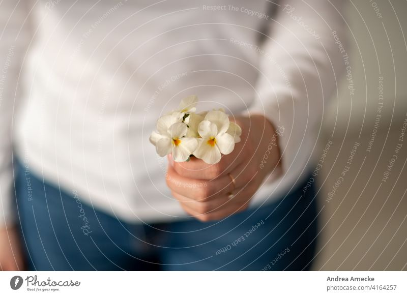 Woman holding a bunch of pansies in her hand flowers Pansy Hand Ring jeans white shirt Feminine Bouquet Flower feminine White for you Gift Birthday blurriness
