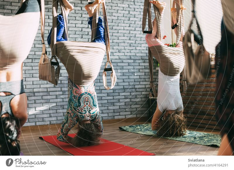A group of young female yogis doing aerial yoga in hammocks at a fitness club. Aero yoga, sports, fitness aero exercise asana woman yoga training pose