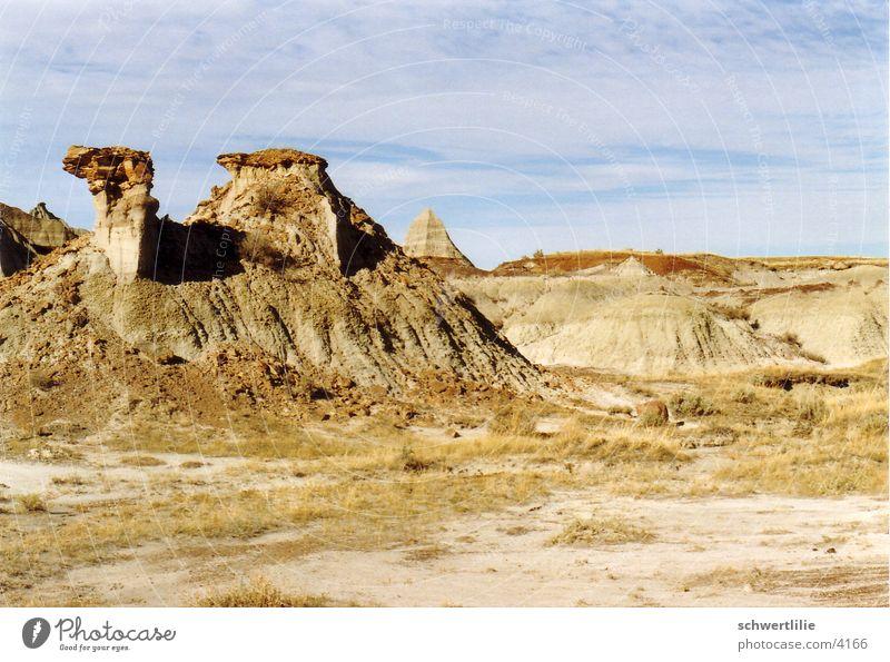 Dromedary in Canada Rock formation Pyramid