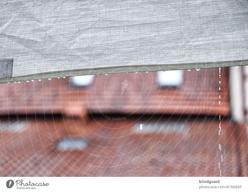 I Can't Stop The Rain Feasts & Celebrations Marquee Garden pavilion rain shelter Exterior shot Wet Drop Drops of water raindrops Weather Bad weather Detail
