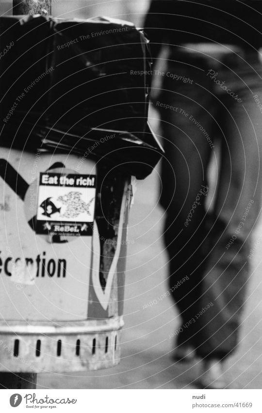 Woman White Black Trash Photographic technology Canton Bern