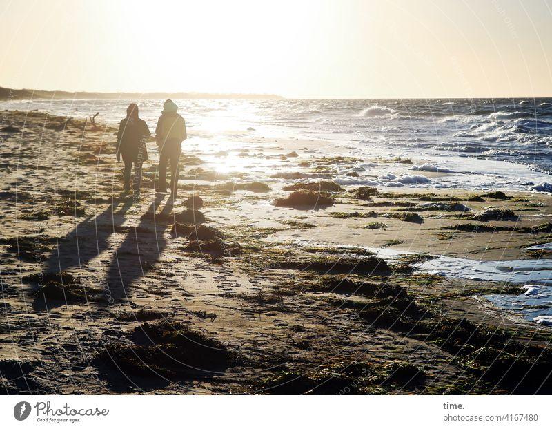 November sun Baltic Sea Ocean Beach Water stroll Wild chill sunny Back-light Sunlight Horizon vacation Relaxation Silhouette Closing time Moody