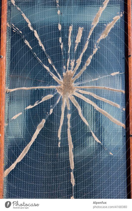 tarantula Spider Spider's web Pane Glass glass break Colour photo Close-up Window pane Deserted Exterior shot Destruction Shard Detail Broken Crack & Rip & Tear