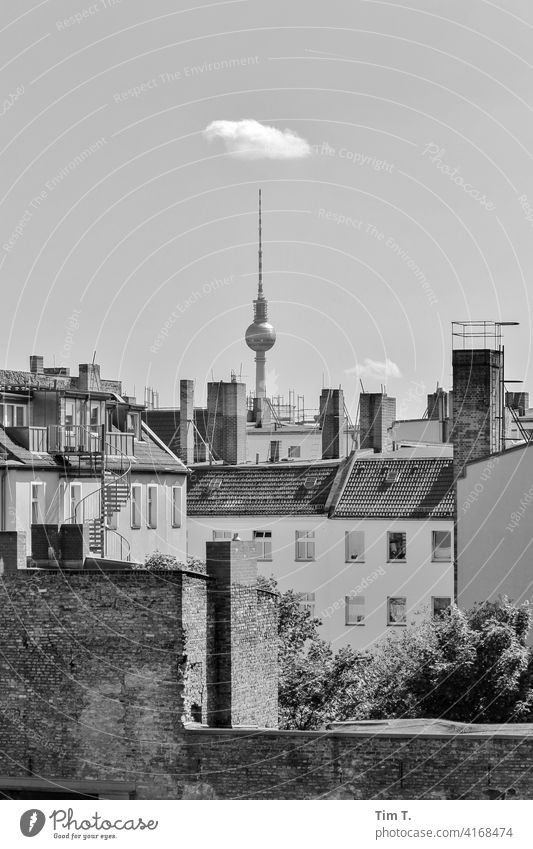 a Berlin backyard with television tower in Prenzlauer Berg poplar avenue Television tower Town Capital city Downtown Exterior shot Old town Deserted Day