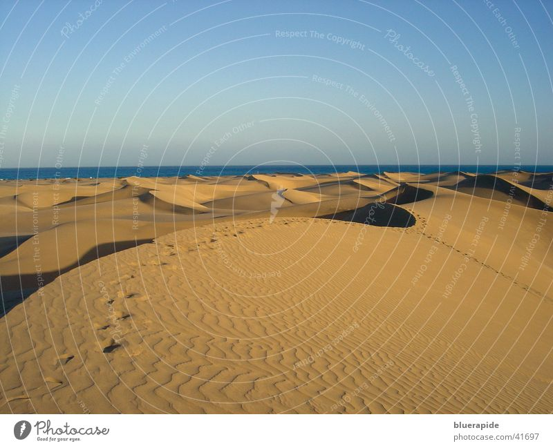 Transient Traces Pattern Yellow Horizon Vacation & Travel Sand Beach dune Structures and shapes Sky Gold Tracks Line Colour Desert
