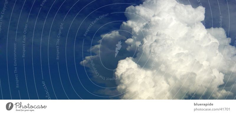 Panorama Cloud Clouds White Easy Cumulus Absorbent cotton Airy Fog Large Sky Blue Structures and shapes Panorama (Format)