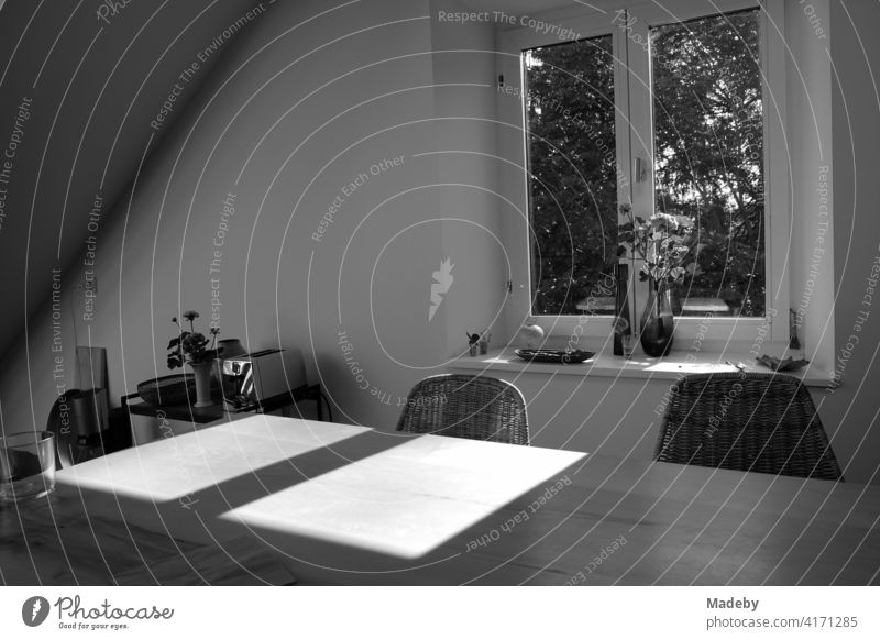 The sun shines through the window of a renovated attic apartment in a farmhouse in Rudersau near Rottenbuch in the district of Weilheim-Schongau in Upper Bavaria, photographed in traditional black and white