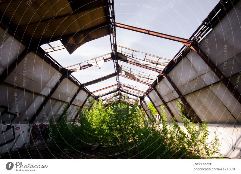 Green looks lost in space lost places Decline Architecture Ravages of time Structures and shapes Change Apocalyptic sentiment Ruin Broken Symmetry Warehouse