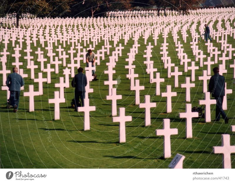 Life Historic War Grave Remember Cemetery Military cemetery