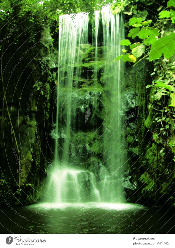 Green Virgin forest Waterfall