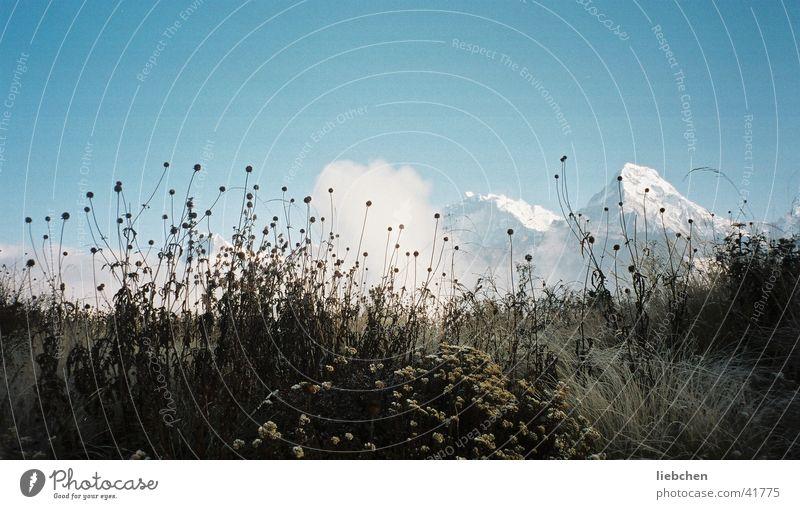 Grass+Berge+ Nepal Mountain Sky